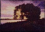 a tree on a shoreline with a purple sunset sky behind